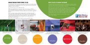 nsb-annual-report-inside2
